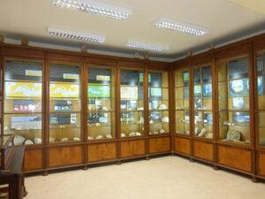 Museo Paleontologia Catania- Foto Rossana Sanfilippo nr 2